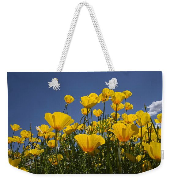 A Little Sunshine  Weekender Tote Bag