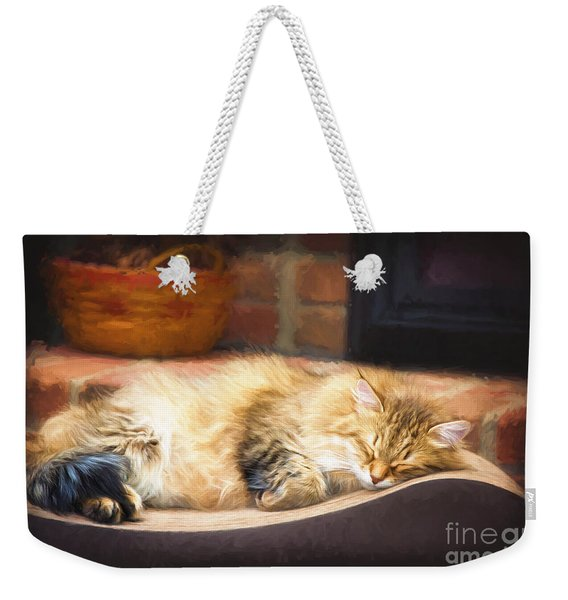 A Long Winter's Nap Weekender Tote Bag