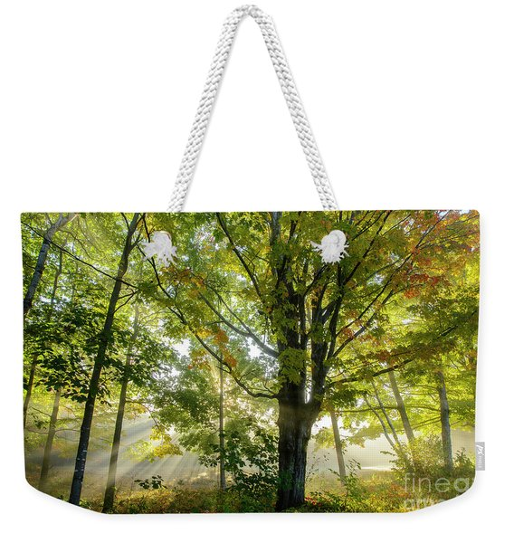 A Misty Fall Morning Weekender Tote Bag