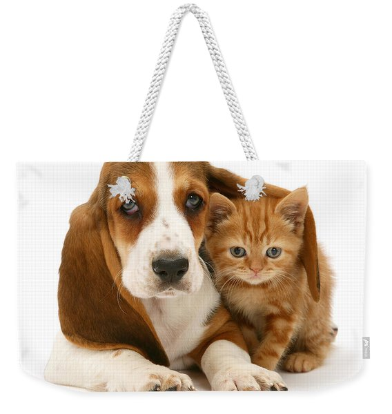 A New Meaning To Cat Flap Weekender Tote Bag