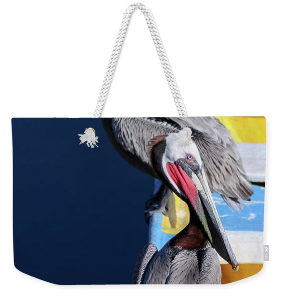 A Pair Of Brown Pelicans On A Blue And Yellow Rowboat Weekender Tote Bag