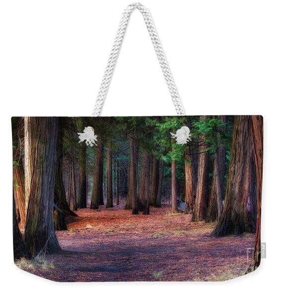 A Path Of Redwoods Weekender Tote Bag