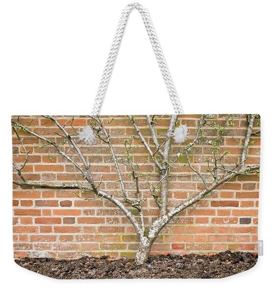 A Pear Tree Weekender Tote Bag