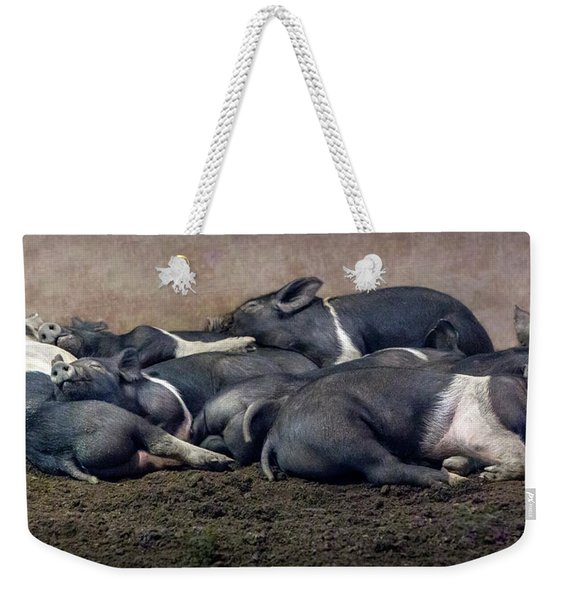 A Pile Of Pampered Piglets Weekender Tote Bag