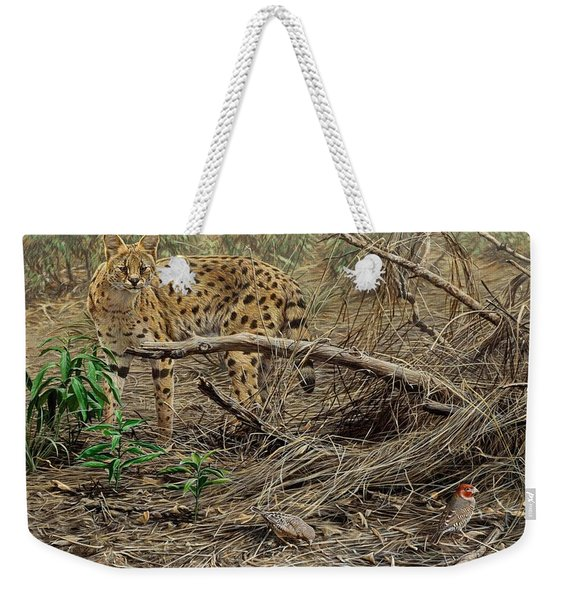 A Quiet Approach Weekender Tote Bag