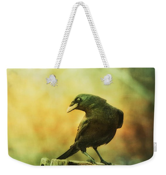 A Ravens Poise Weekender Tote Bag