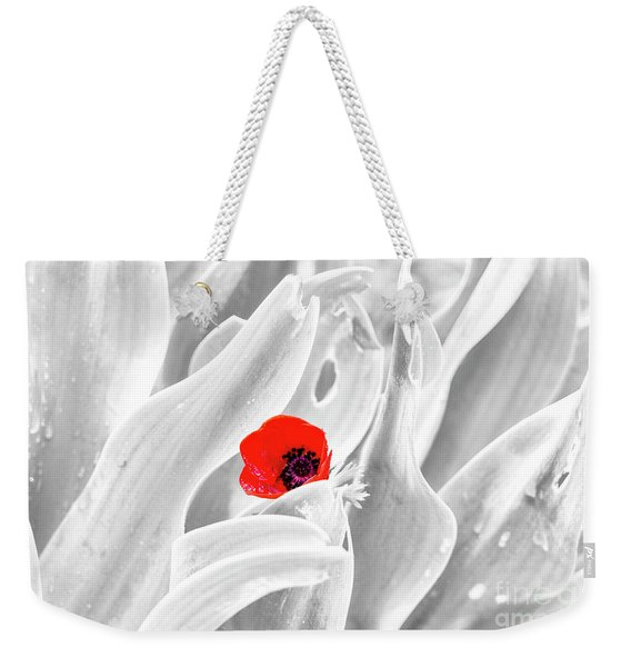 Weekender Tote Bag featuring the photograph A Red Dot by Arik Baltinester