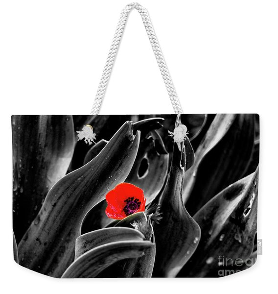 Weekender Tote Bag featuring the photograph A Red Dot L.k. by Arik Baltinester