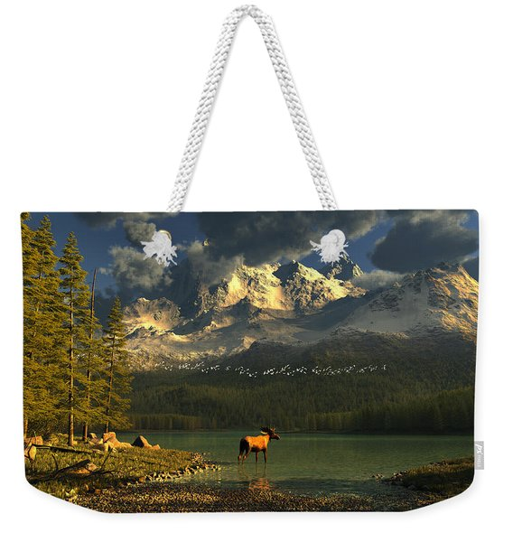 A Small Planet Weekender Tote Bag