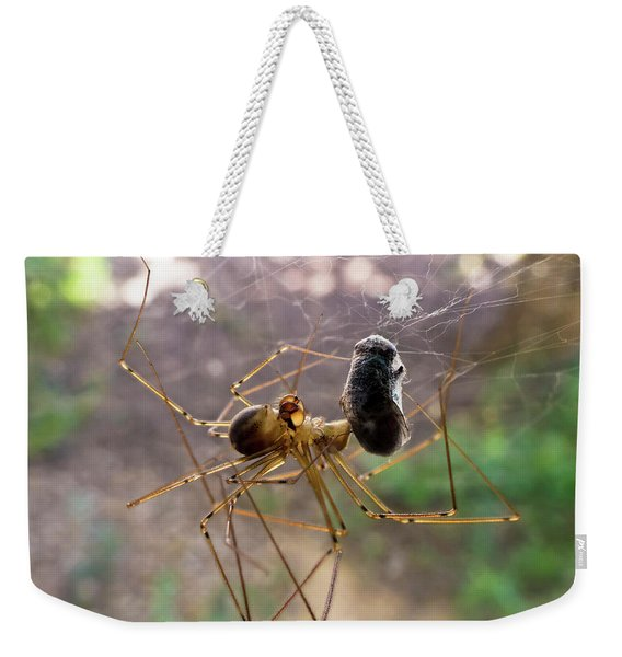 A Spider Has This Fly All Wrapped Up Weekender Tote Bag