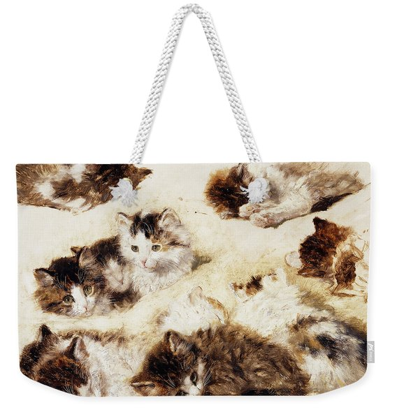 A Study Of Kittens Weekender Tote Bag