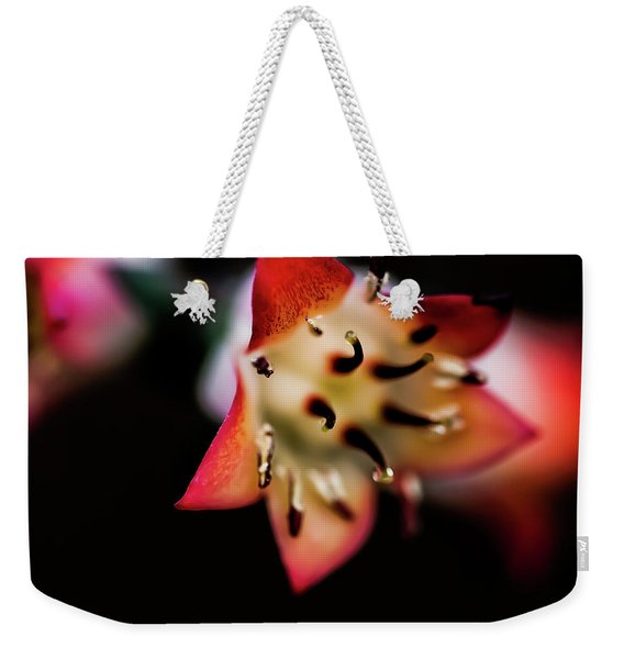 Absract - 0377 Weekender Tote Bag