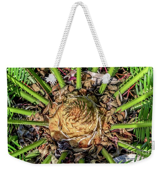 Abstract Nature Tropical Fern 2096 Weekender Tote Bag