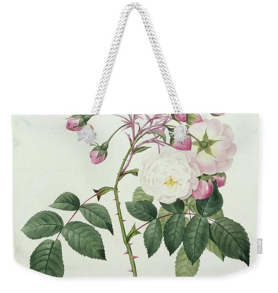 Adelia Aurelianensis Weekender Tote Bag
