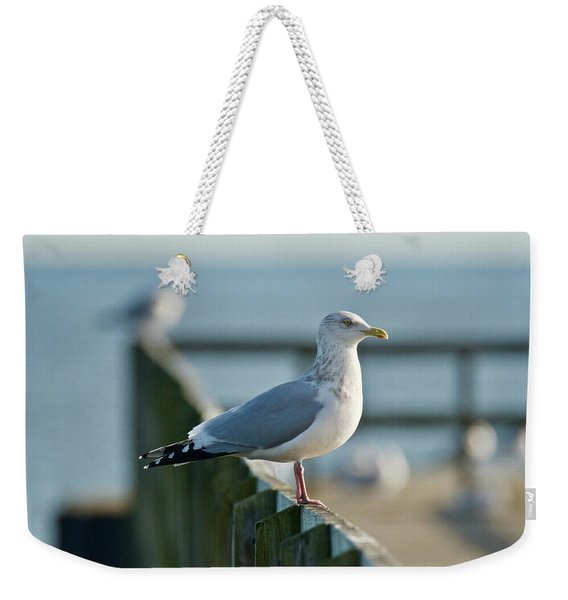 Adult Herring Gull Weekender Tote Bag