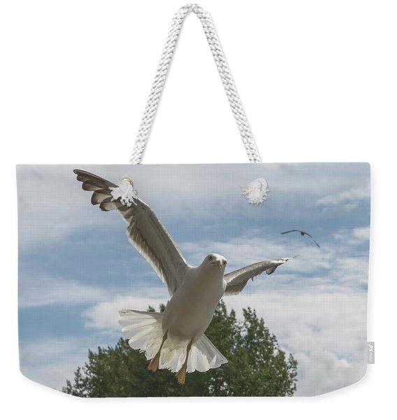 Adult Seagull In Flight Weekender Tote Bag