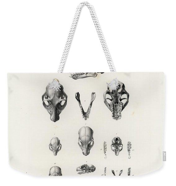 African Mammal Skulls Weekender Tote Bag