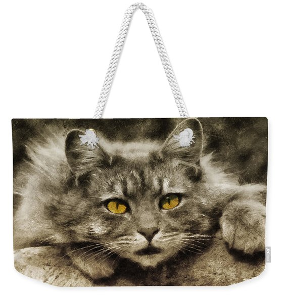 After Dark All Cats Are Leopards Weekender Tote Bag