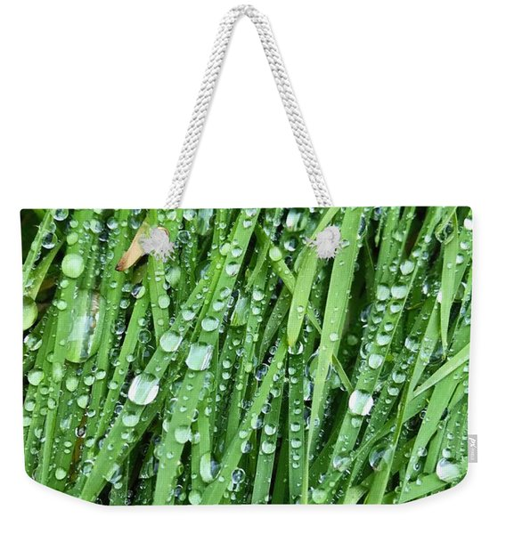 After The Rainfall Weekender Tote Bag