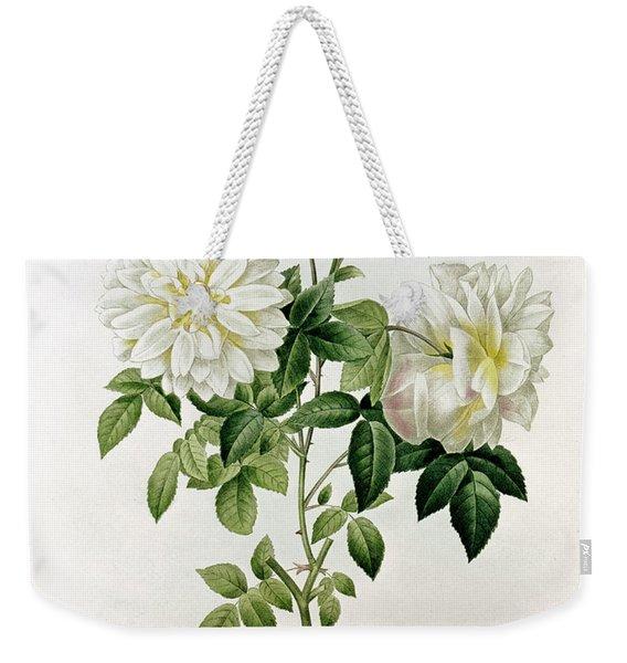Aime Vibere Weekender Tote Bag