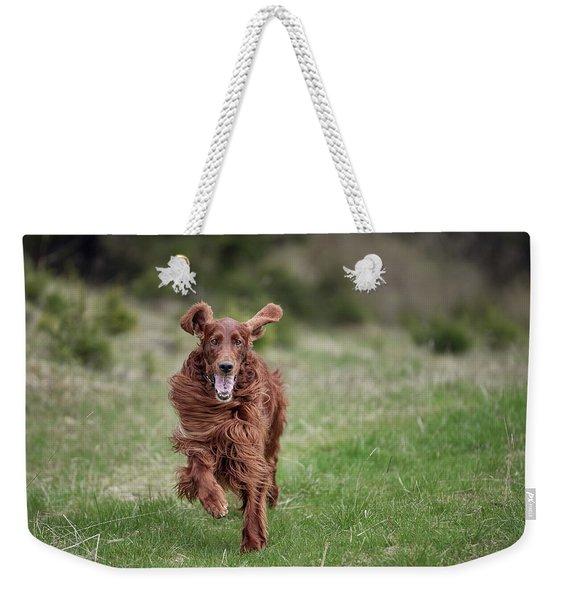 Allegro's March Weekender Tote Bag