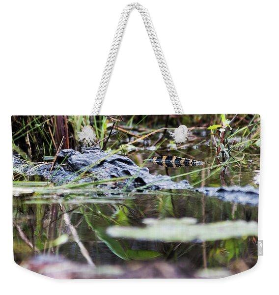 Alligator And Hatchling-2 Weekender Tote Bag