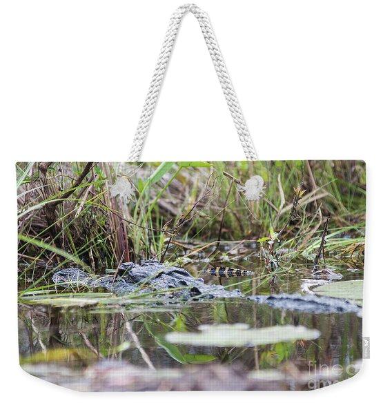 Alligator And Hatchling Weekender Tote Bag