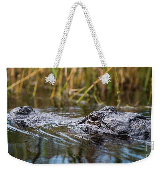 Alligator Closeup-2-0600 Weekender Tote Bag