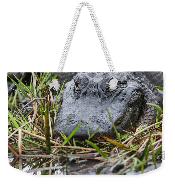 Alligator Closeup-0642 Weekender Tote Bag