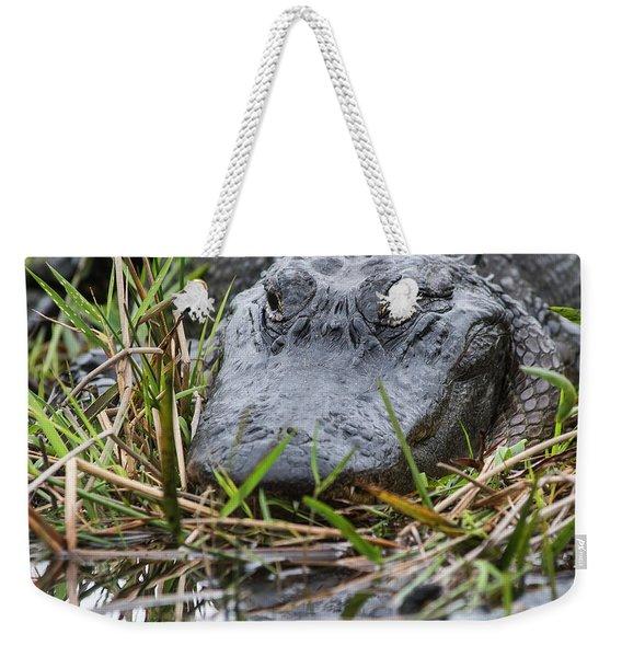 Alligator Closeup 0642a Weekender Tote Bag