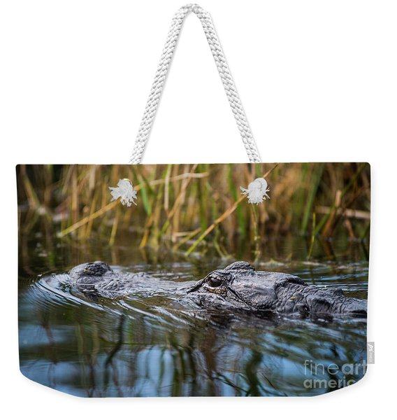 Alligator Closeup1-0600 Weekender Tote Bag
