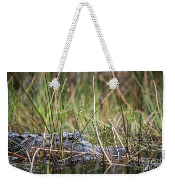 Alligator In Grass 0609 Weekender Tote Bag