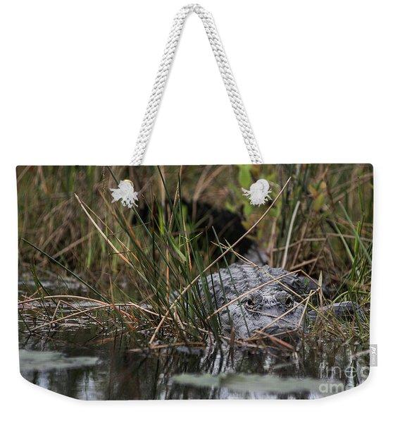 Alligator Lurks-0620a Weekender Tote Bag