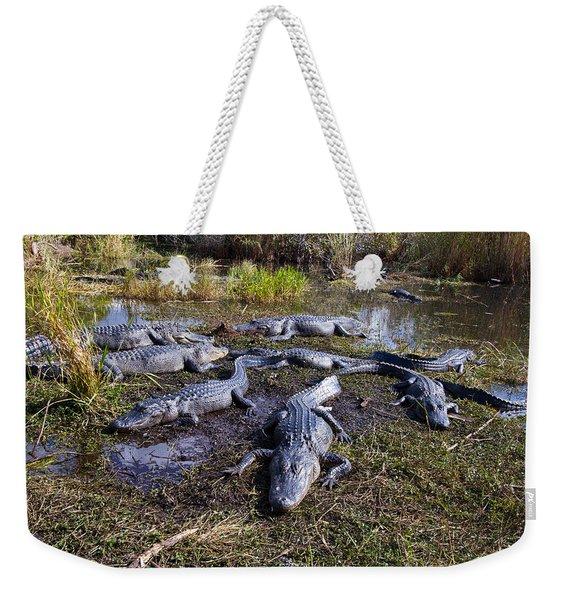 Alligators 280 Weekender Tote Bag