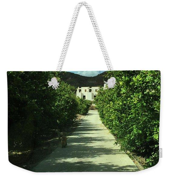 Almeria Mountain Road Spain Weekender Tote Bag