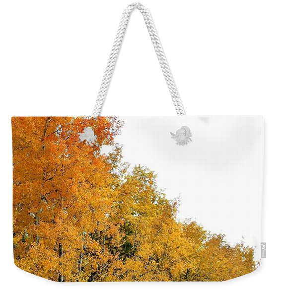 Along Broadwater Road Weekender Tote Bag