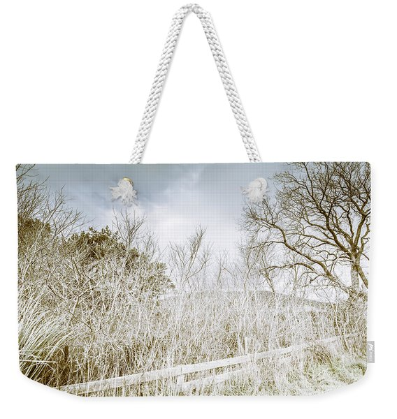 Alonnah Ice Landscape Weekender Tote Bag