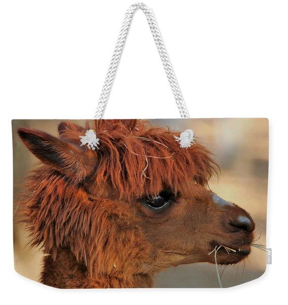 Alpaca Portrait Weekender Tote Bag