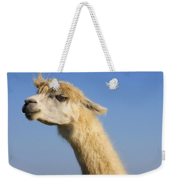 Weekender Tote Bag featuring the photograph Alpaca by Skip Hunt