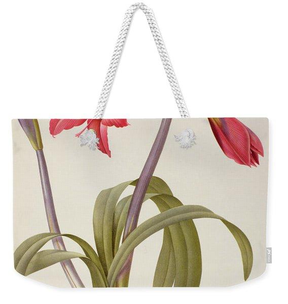Amaryllis Brasiliensis Weekender Tote Bag