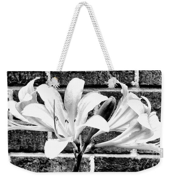 Amaryllis Inspiration Weekender Tote Bag