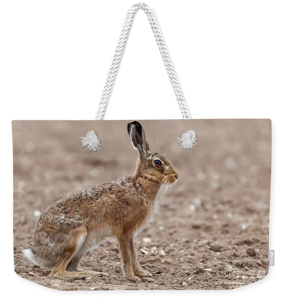 Amazing Wild European Hare Close Up Sat In A Arable Field Weekender Tote Bag