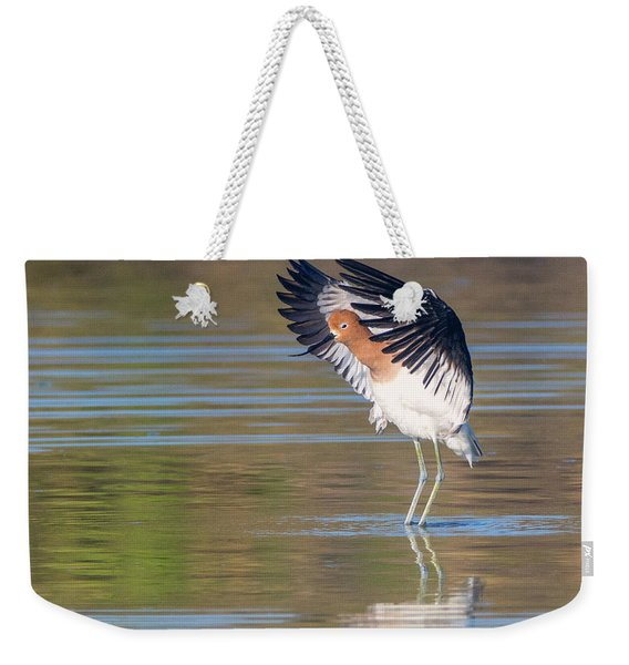 American Avocet 1878-031418-1cr Weekender Tote Bag