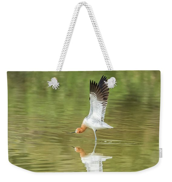American Avocet Stretching Weekender Tote Bag