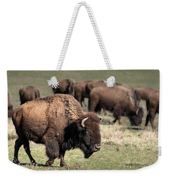 American Bison 5 Weekender Tote Bag