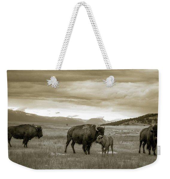 American Bison Calf And Cow Weekender Tote Bag
