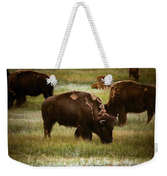 American Bison Grazing Weekender Tote Bag