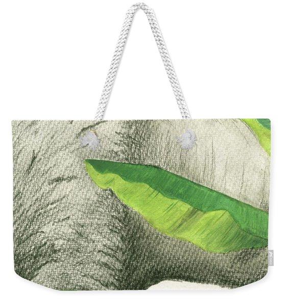 American Buffalo 2 Weekender Tote Bag