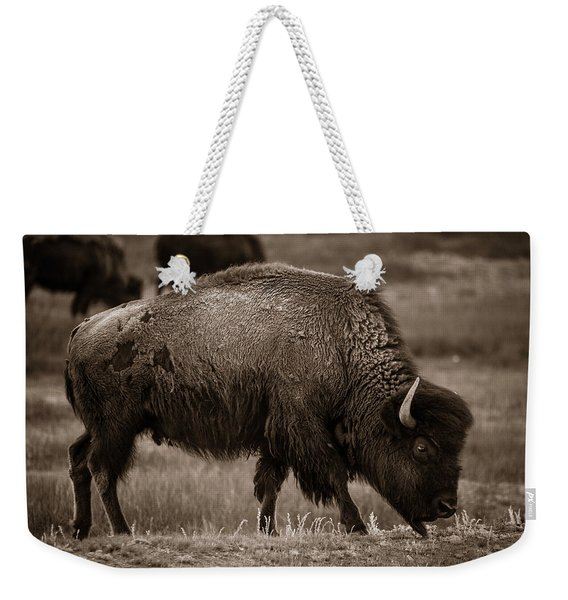 American Buffalo Grazing Weekender Tote Bag