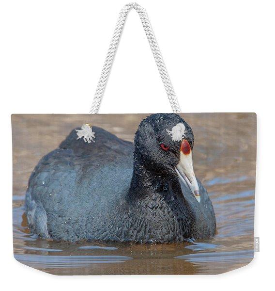 American Coot Dmsb0140 Weekender Tote Bag